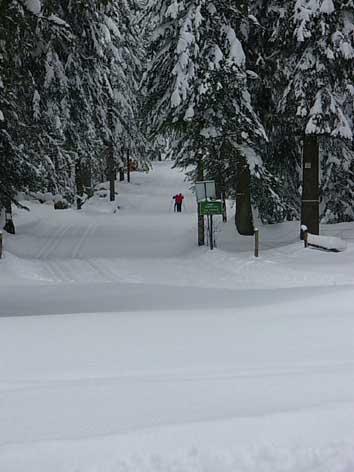Ski de fond - Coupe du jura ski de fond ...